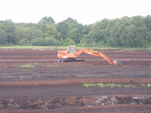 Peat extraction 2007 (photo: B.Sitch)